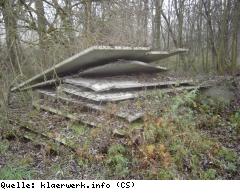 Bild Akt-Umweltschaeden-F.jpg