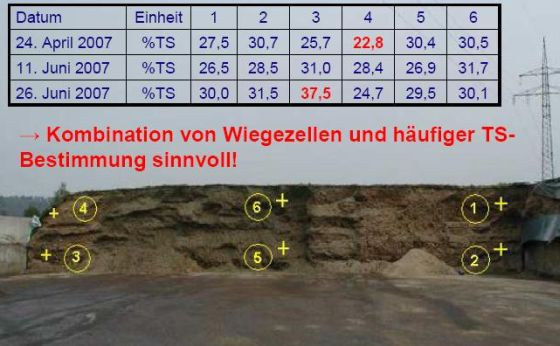 Bild FW-Gas-Wiese-12.jpg