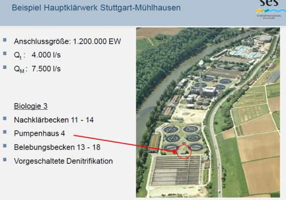 Bild FW-AWT-Dresden-30.jpg